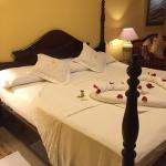 rose petals on the bed