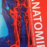 Aktuelle Sonderausstellung «Anatomie»