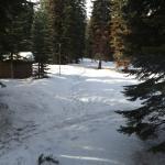 Photo of Montecito Sequoia Lodge