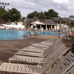 Sheraton Vistana Resort - Lake Buena Vista Foto