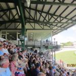 Grandstands for viewing races