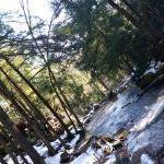 Towards Tolliver Falls