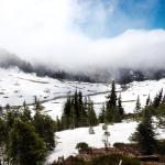 Photo de Mount Rainier