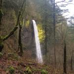 Columbia River Gorge National Scenic Area Foto