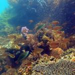 Photo de Andilana Beach Resort