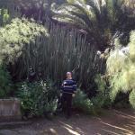 Photo de Jardin Canario