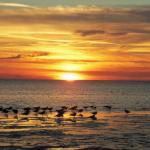 Sunset At Green Key