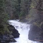 Little Qualicum Falls, after the rain.