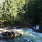 Little Qualicum Falls, sunshine corner.