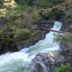 Little Qualicum Falls, rushing ice green water.