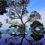 Photo de Sri Panwa Phuket