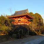 Ninna-ji Temple Foto