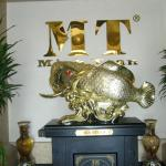 Photo of Minh Toan Hotel