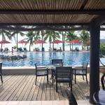 Musket Cove Island Resort Foto
