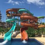 Pool - Royalton White Sands Resort Photo
