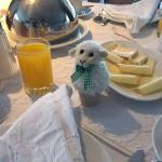 Das gekochte Ei im Schafskleid :-)
