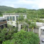 ジャングルに囲まれたホテル