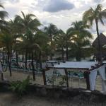 Foto de Occidental Grand Xcaret All Inclusive Resort