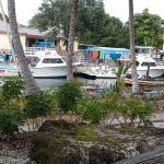Photo de Marina Del Mar Resort And Marina
