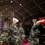Bellissimo durante il periodo di Natale
