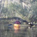 Lofton Creek, Fernandina Beach FL