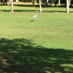 Roaring River Golf Course Accomodation Bild