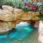 Discovery Cove Foto