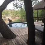 Terrace with plunge pool@Founders camp