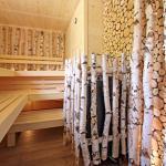 Bio-Birken-Sauna