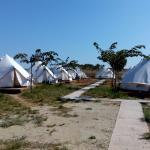 Mini safari tents area