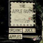 Philo Apple Farm Foto