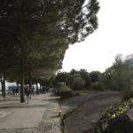 Parque Das Nacoes Foto