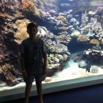 My son in front of the big tank