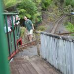 Driving Creek Railway and Potteries Foto