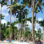Photo de Melia Caribe Tropical
