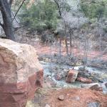Oak Creek Canyon Foto