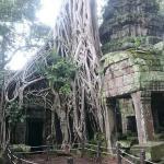 Ponloue Angkor Siem Reap Villa