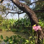 Secret Garden Chiang Mai Foto