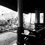 Photo of Costa Malabari