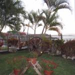 HOVIMA Jardin Caleta Foto