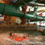 Holiday Inn Hotel & Suites Owatonna Foto