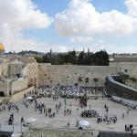 Photo de Guided Tours Israel - Day Tours