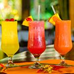 Restaurante Ara Macaw