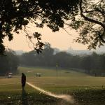 Early morning golfing!