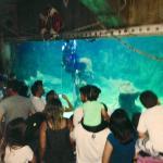 Foto de Sao Paulo Aquarium