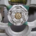 The White Rose of York!