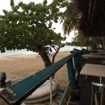 picture from the islandbeachcomber bar