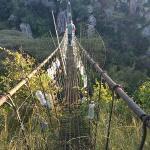 glass metal string bridge