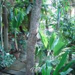 Photo de Botanical Gardens (Botanisk Have)