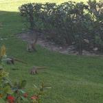 Grand Bahia Principe Tulum Foto